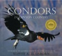 Condor in Canyon Country