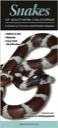 Snakes of Southern California: A Guide to Common & Notable Species