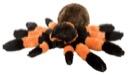 "Stuffed Animal: CK Tarantula 12"""